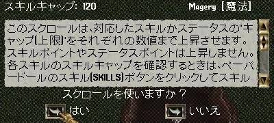 mage120_2.jpg