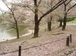 花博記念公園(鶴見緑地または緑地公園)