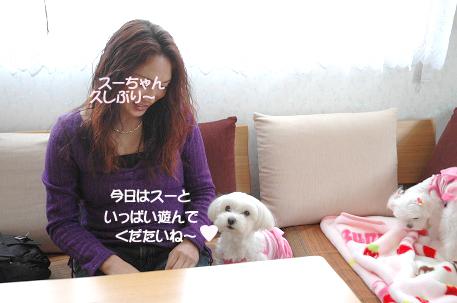 200803014-012.jpg