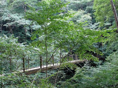 高尾山07.10.6-4