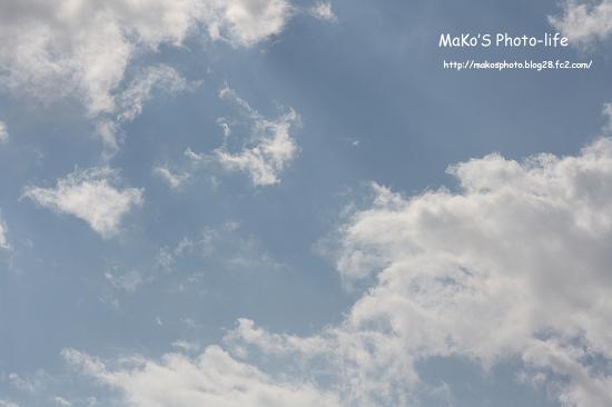 mIMG_9013のコピー