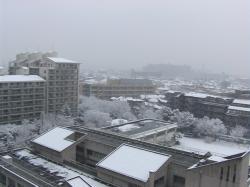 1/21の雪模様