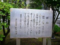 福島県知事による植樹