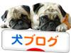 blog-mura or bunner