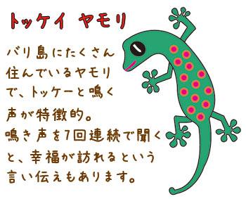 gekko-7-1