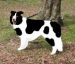 牛さんをインスパイア