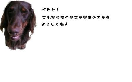 20070412144641.jpg