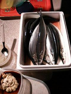 2008秋刀魚