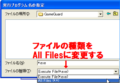 GameGuard設定