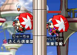 shi-ra04.jpg