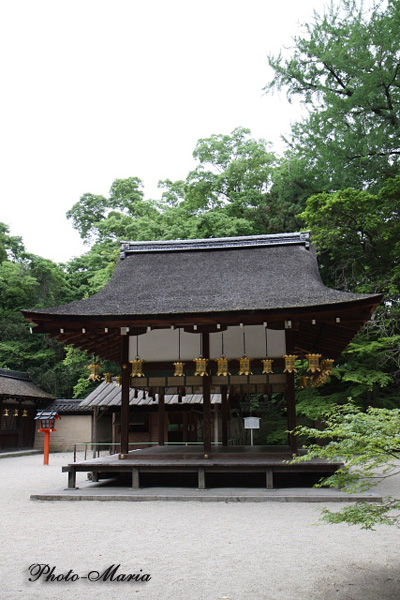 12-0806kawai17.jpg