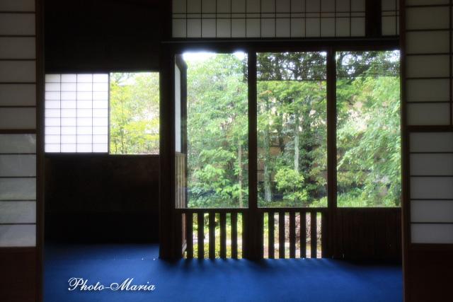 2-0806nishimura01.jpg