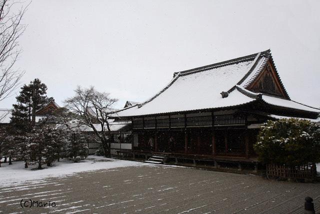 2-ninnaji010.jpg