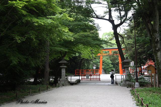 6-0806kawai24.jpg