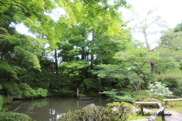 6-0806nishimura08.jpg