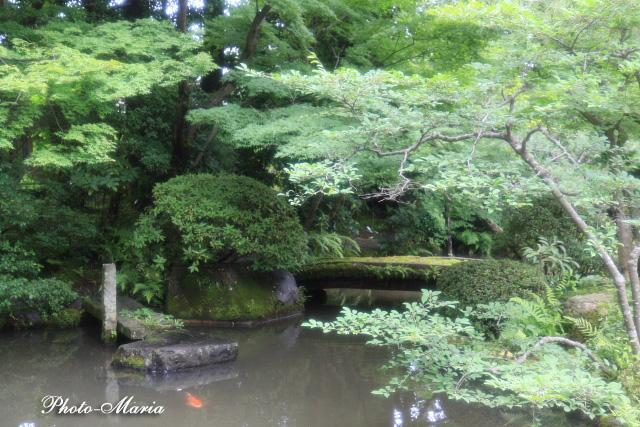 7-0806nishimura10.jpg