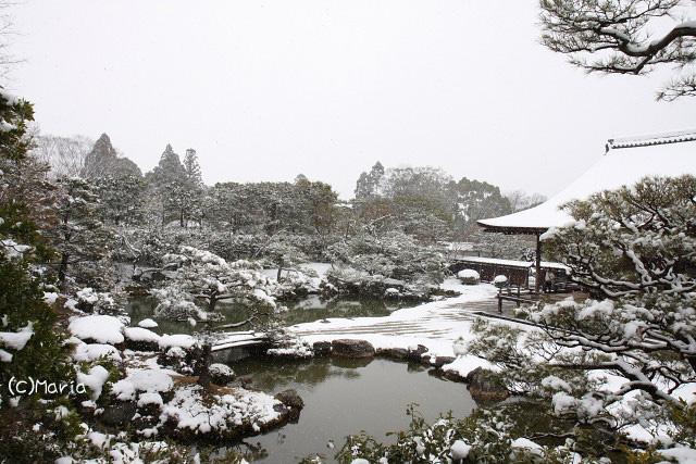 8-ninnaji019.jpg