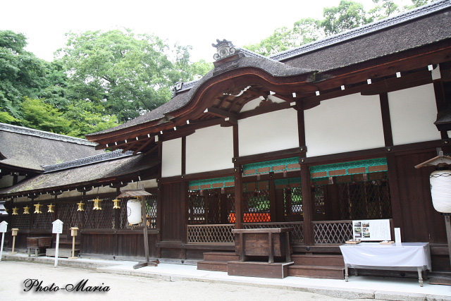 9-0806kawai11.jpg