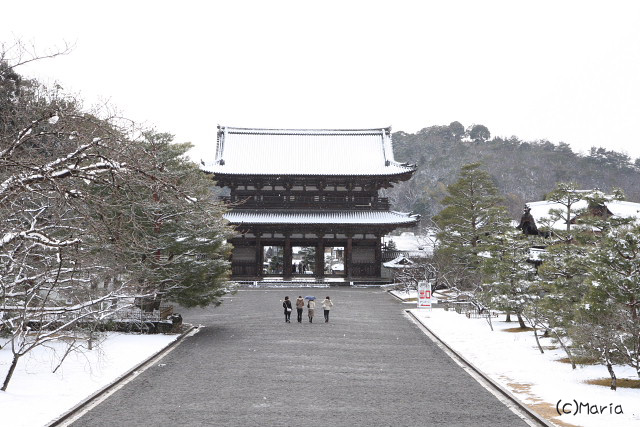 c-ninnaji004.jpg