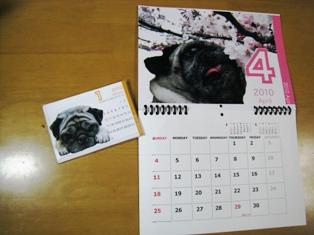 calendar2010.jpg