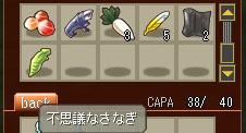 ss20060719_sanagi.jpg
