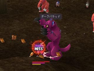 ss20060804_22.jpg