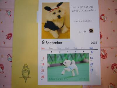 ふーたくんカレンダー♪