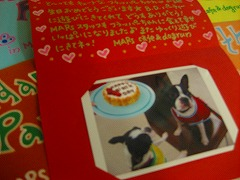 B.D.カードのプレゼント♪