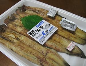 hamanako_unagi_01.jpg