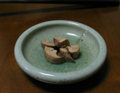 hamokimotaitan01.jpg