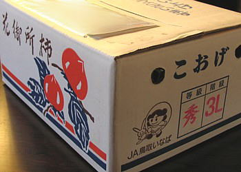hanagosyo2006_01.jpg