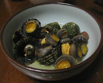 kai_kawadu_03.jpg