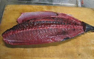 katsuo_200705_01.jpg