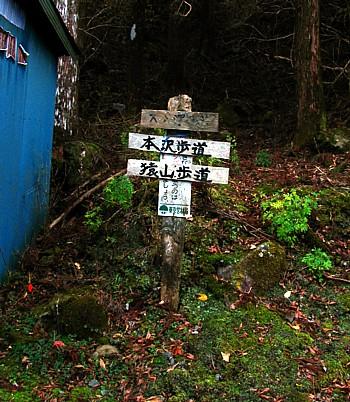 saruyama_09.jpg