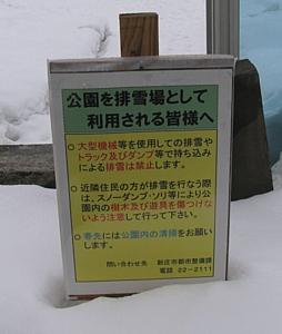 shinjo_03.jpg