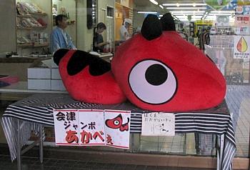 wakamatsu2008_jumboakabee.jpg