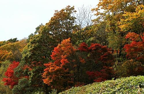 2009-10-20-1.jpg