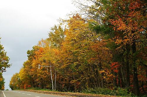 2009-10-20-4.jpg