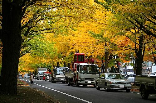 2009-10-26-1.jpg
