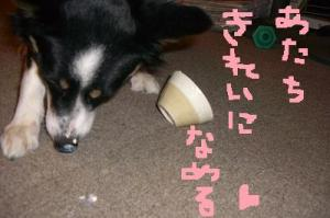 豆腐 043