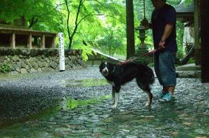 アジプールと横蔵寺 033