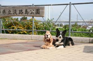 2008-11-10淡路 045