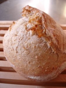 bread051125-1