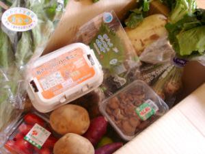 はにーびーの有機栽培野菜