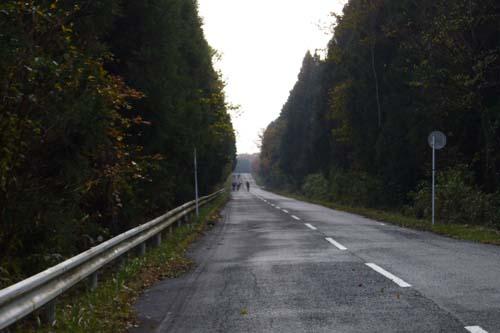 英彦山の道