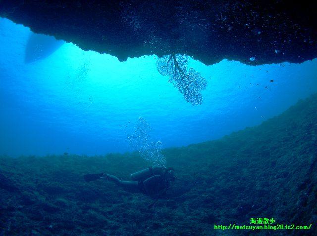 岩の間から海をのぞくと!!