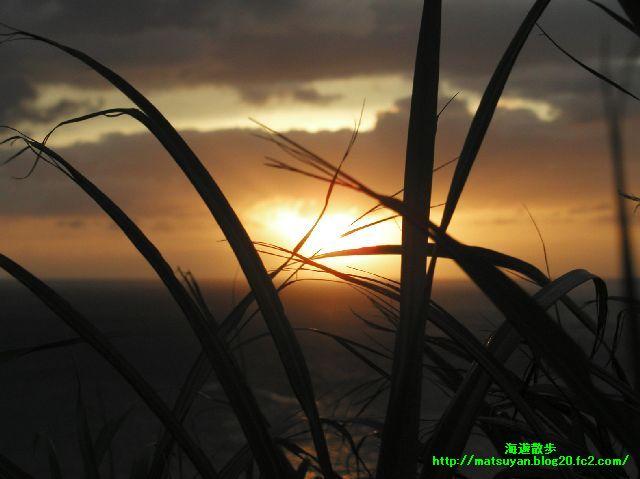 志木那島の夕日