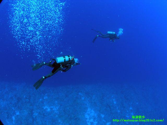 海を漂うダイバー
