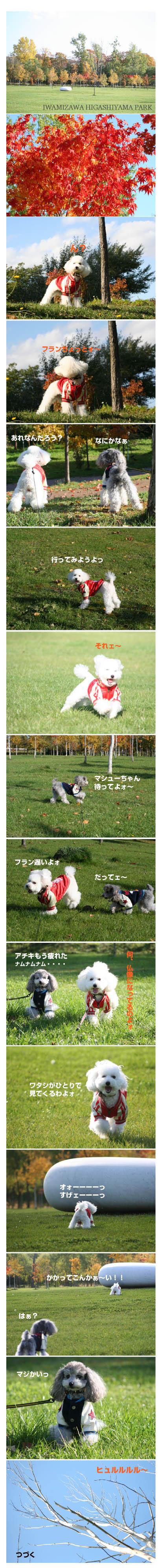 07.10.24higashiyamapark1.jpg