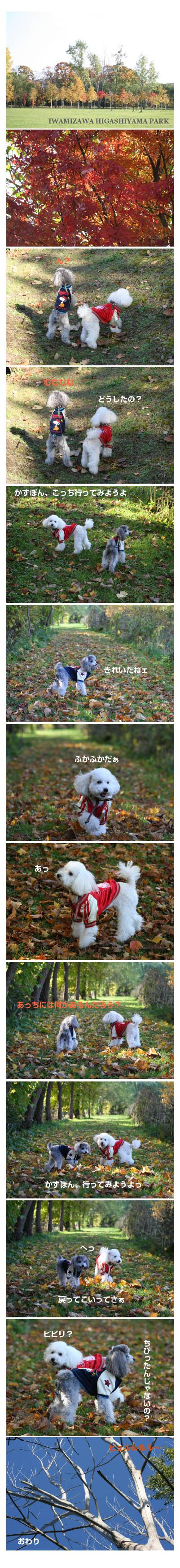 07.10.24higashiyamapark2_20071026195649.jpg